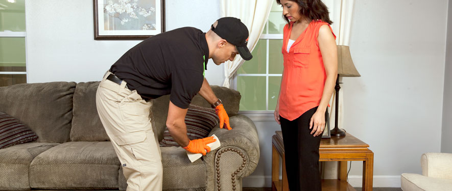 Denville, NJ carpet upholstery cleaning